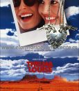 Thelma-Louise cartel